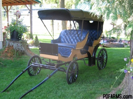 HORSE CARRIAGE FOR SALE/ MINIATURE OR PONY SURREY, HORSE WAGON